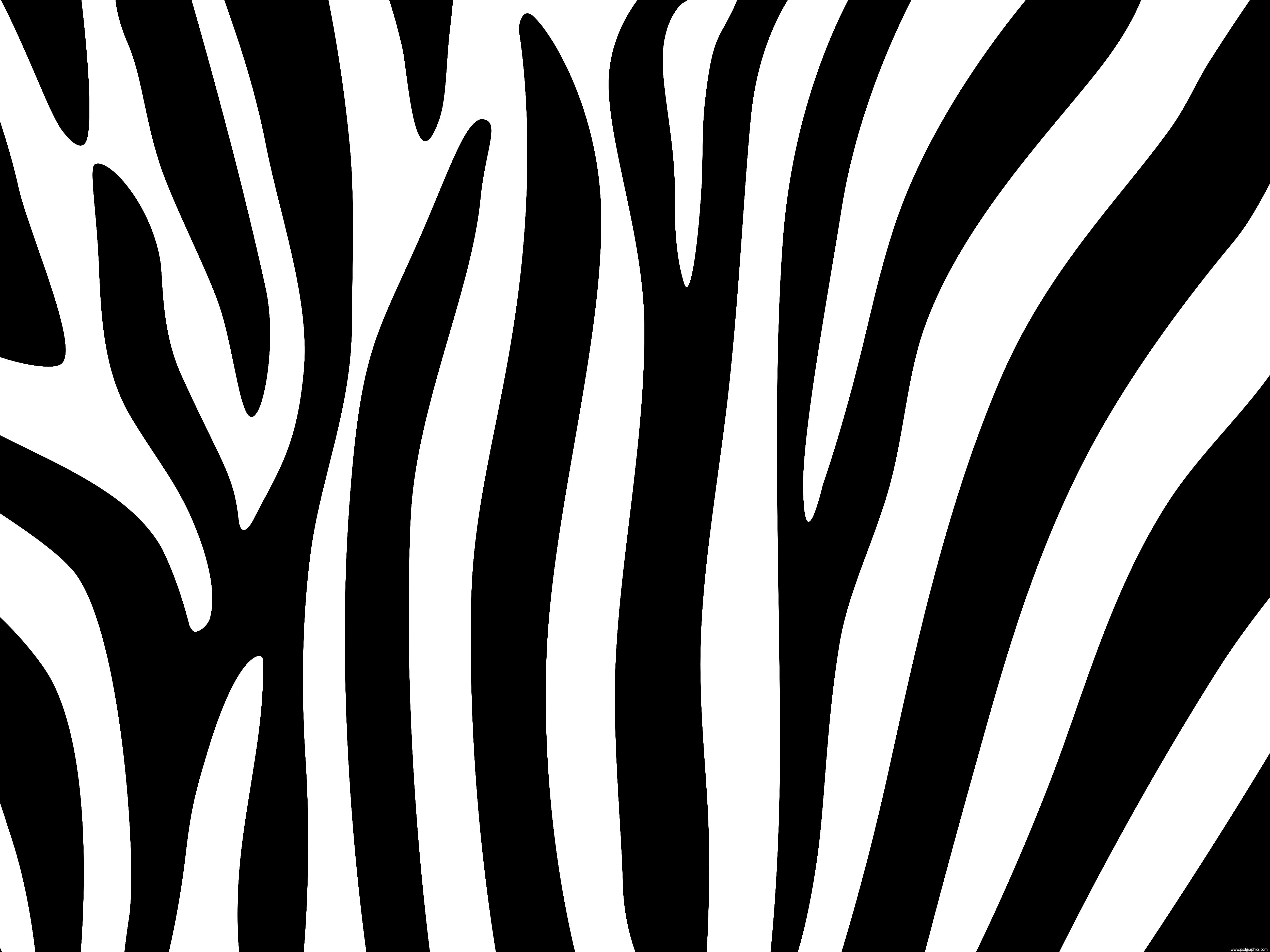 Zebra wallpaper for bathroom